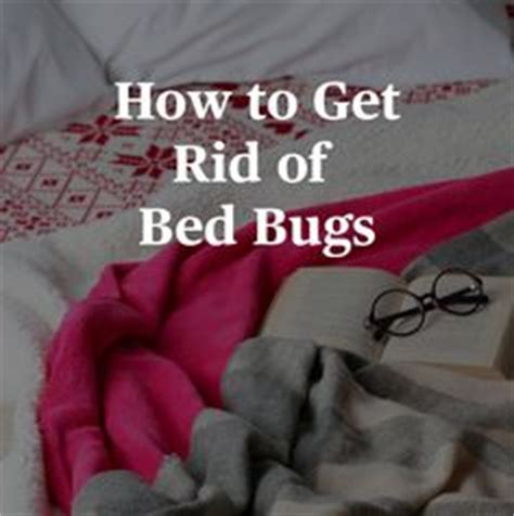 the best way to get rid of bed bugs 1000 images about bed bugs on pinterest bed bugs how