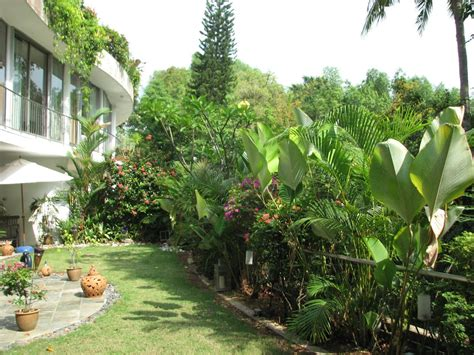 garden design ideas for your home in pictures and tropical