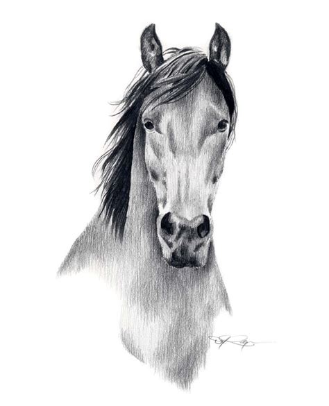 mustang horse drawing mustang horse pencil drawing art print signed by artist dj