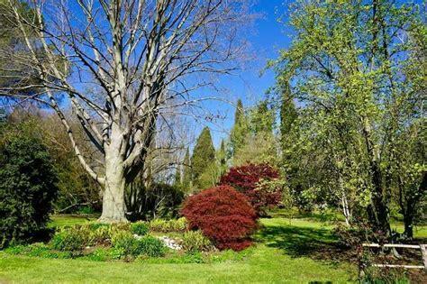 i giardini di ninfa apertura giardino di ninfa informazioni utili e date di apertura