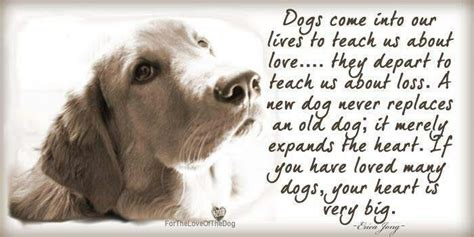 quotes about dogs dying quotes image quotes at hippoquotes