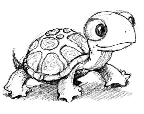 cute turtle drawing cute animals pinterest coloring