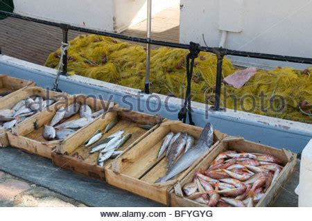 boats for sale zante fresh fish sold in the harbour of namibe formerly known