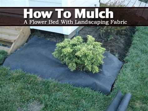 how to mulch a flower bed how to mulch a flower bed with landscaping fabric