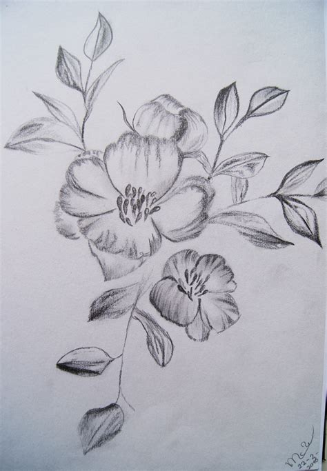 bloem tekenene tekeningen 2 maya willemse