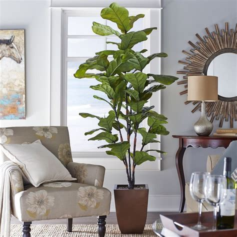 living room trees spruce up your living space with artificial silk trees