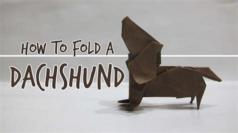 pug rescue scotia the best tutorial for dachshund learn how to fold an origami dachshund
