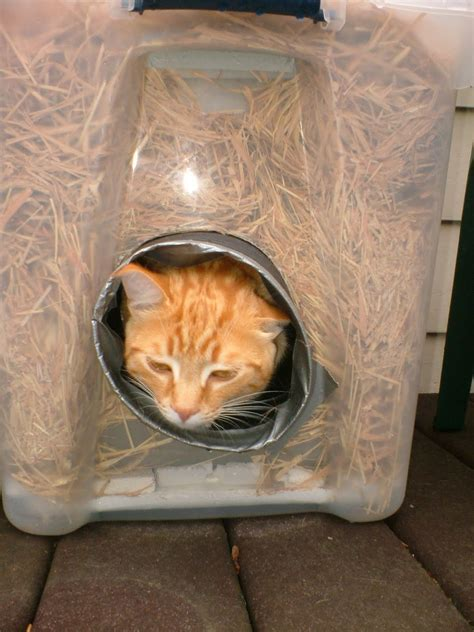 outdoor cat house for winter the very best cats how to make a winter shelter for an