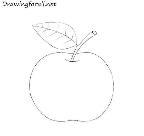 sketch by mac how to draw an apple for beginners drawingforall net