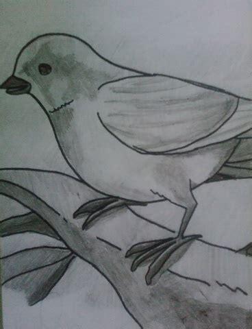 imagenes para dibujar no tan faciles originales dibujos a carboncillo faciles de hacer
