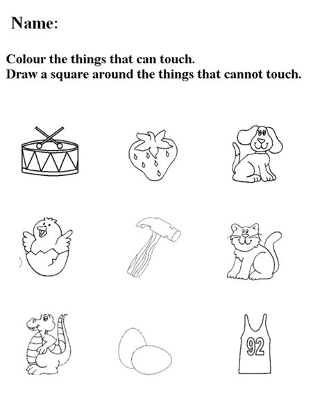 5 senses coloring pages bestofcoloring com 5 senses coloring pages bestofcoloring com