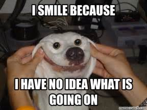 Dog Smiling Meme - my owner forced me to smile now i can t stop smiling