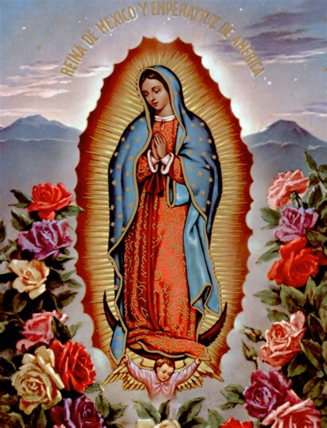 fotos de la virgen de guadalupe mexico gratis tropicalizer la vierge de guadalupe