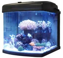 beleuchtung nano aquarium jbj 28g nano cube w led question aquarium advice
