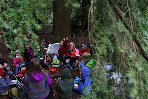 Can I Travel Outside The Us With A Criminal Record Go Outside And Learn At The Arboretum S Outdoor Forest School The Seattle Times