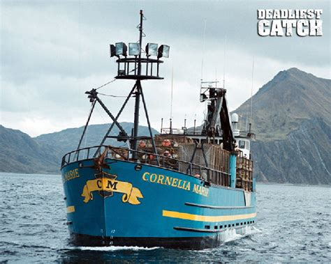 deadliest catch has junior gone fishing for the last time video cornelia marie deadliest catch wallpaper out on the