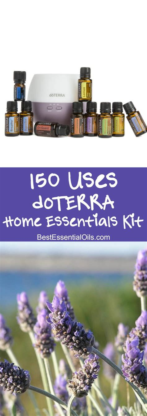 home essentials best 25 doterra ideas on pinterest