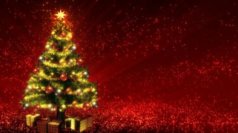 growing red christmas tree stock video footage synthetick