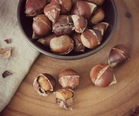 How To Roast Chestnuts In A Fireplace by How Do You Roast Chestnuts On Open Gettverse