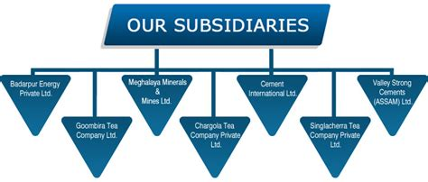 pattern energy subsidiaries subsidiaries