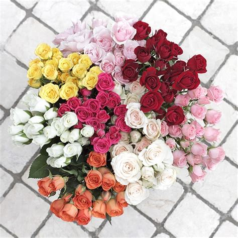 Sprei Roses by Assorted Spray Roses Spray Roses Flowers By