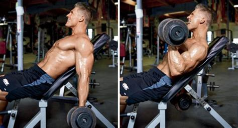 bicep curl with bench press incline dumbbell biceps curl bodybuilding wizard