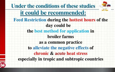 Feed Restriction On Broiler Performance