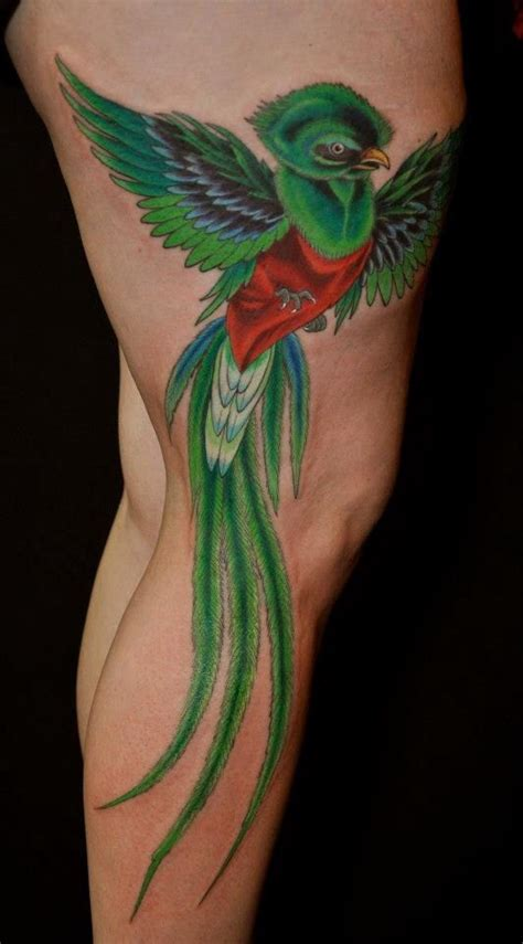 quetzal bird inspiration modification