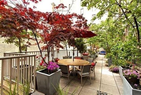 piante in terrazzo come arredare un terrazzo con fiori e piante uno spazio