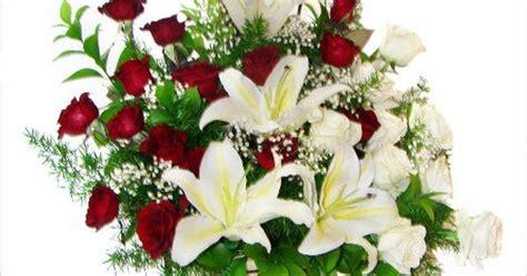 Bunga Mawar Asli Bentuk Cocok Untuk Kado Hadiah info keren paling top untuk anda beli bunga untuk pacar