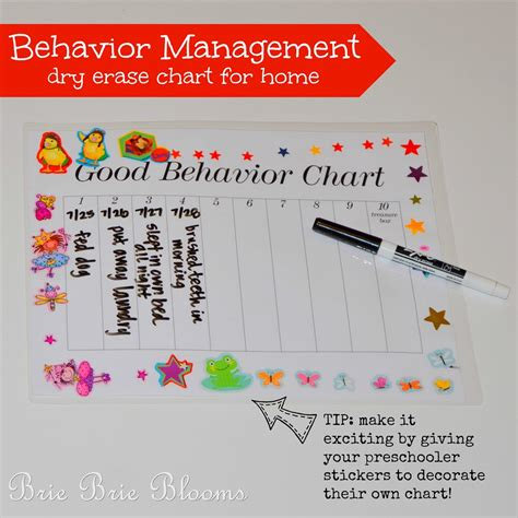 behavior management erase chart for preschool aged