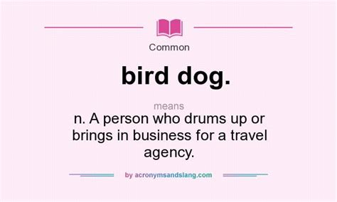 Common Mba Terms by What Does Bird Definition Of Bird Bird