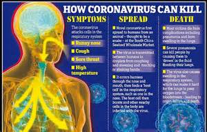 suspected coronavirus patient  wheeled    chinese