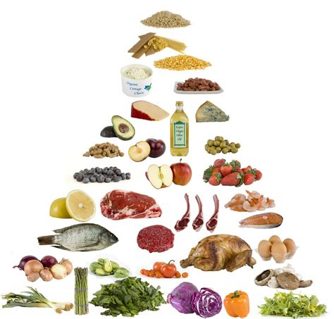 d family carbohydrates illustration of what low carb food to eat
