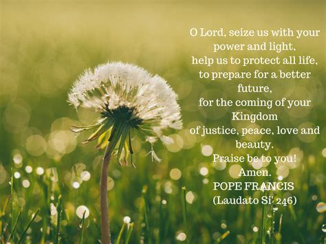 Ordinary World Harvest Church #6: Laudato-Si-246.png