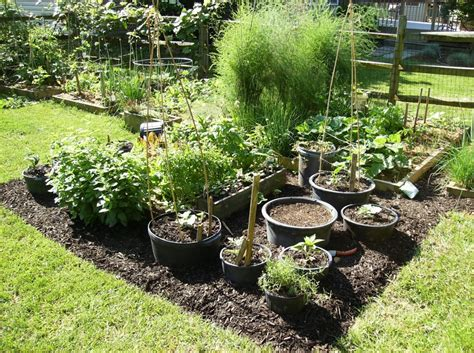container gardening for effective and functional planting