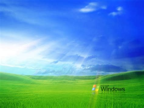 computer themes hd windows xp wallpapers grass windows xp wallpapers