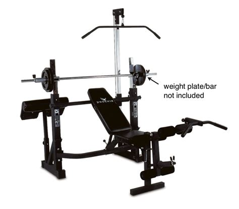 phoenix power pro olympic bench phoenix 99226 power pro olympic bench review