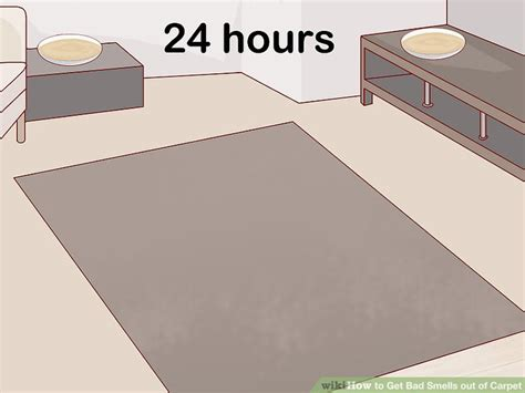 how to get smoke odors out of area rug 4 easy ways to get bad smells out of carpet wikihow