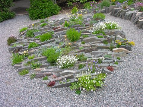 American Rock Garden Society Greetings From Newfoundland Forum Topic American Rock Garden Society