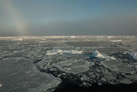 arctic sea nasa study improves forecasts of summer arctic sea