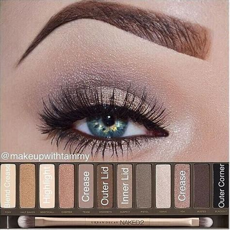 best decay palette 25 best ideas about decay on