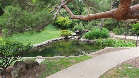 Pasadena Botanical Gardens Hours Garden Ftempo Huntington Botanical Gardens Hours