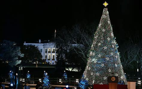 5 amazing christmas trees in the united states impressive