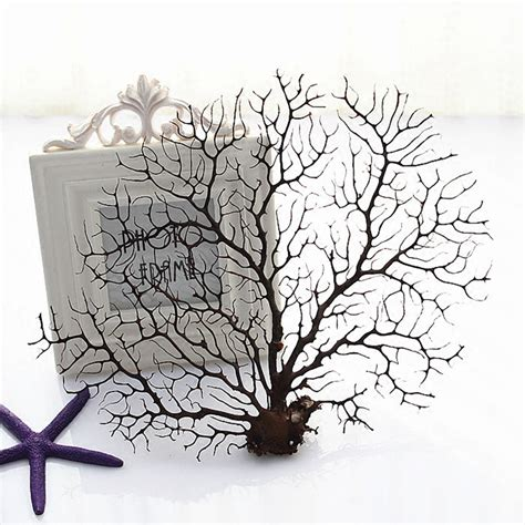 Preserved Flower Black Real Best Choice To Decorate Room real coral plant tree branch for photo frame fish tank wedding home office