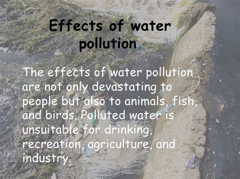 6 Effects Of More Water by Effect Of Water Pollution Free Pictures