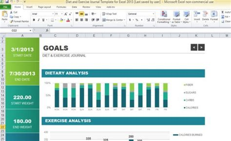diet  exercise journal template  excel