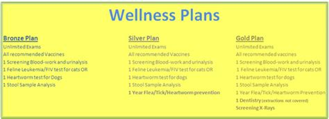 puppy wellness plan cat and wellness plans veterinarians in brewerton cicero animal clinic