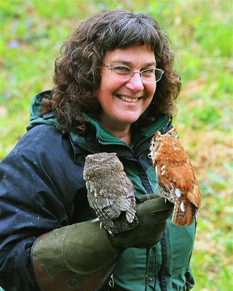 appalachian prey books photo courtesy of the three rivers avian center quot winds of