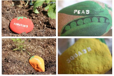 garden signs for vegetables tell us are front yard vegetable gardens a bad idea